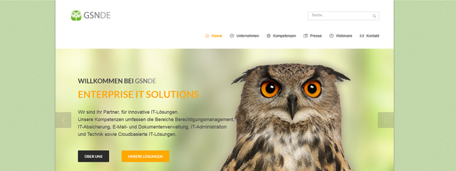 TYPO3 basierte Website